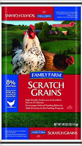 grain chicken feed - 4
