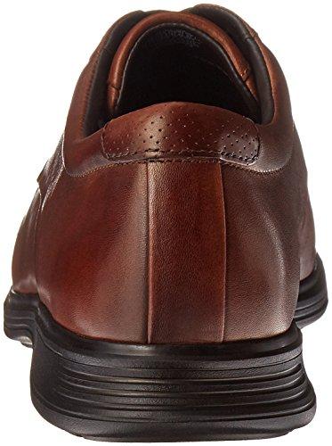 Rockport Heren Dressports 2+ Lichte Apron Toe Oxford Nieuw Bruin Leer