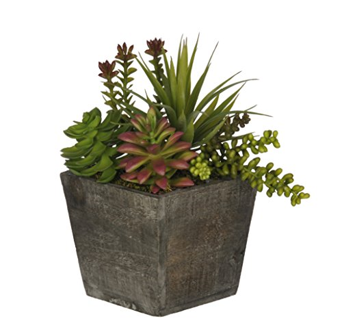 House of Silk Flowers Artificial Succulent Garden in Small Grey-Wash Wood