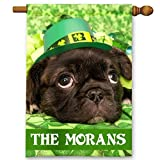 St. Patrick's Day Irish Dog Personalized Theme Double-Sided Garden/House Flag
