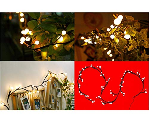 Globe Decorative String Lights,BaiYunPOY 8.3Ft 72 LED Hanging Indoor/Outdoor String Lights for Garden,Xmas Party,Bedroom,Dorm,Window Curtain Backyard,Party,Wedding(Warm White) by BaiYunPOY (Image #4)