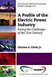 An Overview of the Electricity Industry, Clark, 1606493833