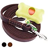 ADITYNA - Leather Dog Leash 6 Foot x 5/8 inch - Strong and Soft Leather Leash for Large Medium and Small Dogs - Heavy Duty Training Leash (Brown)