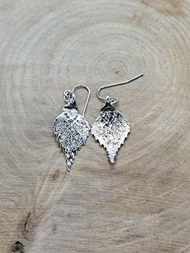 Fine Silver Dipped Real Birch Tree Leaf Drop Dangle Earrings Nature Outdoor Earth Jewelry Beautiful (E170)
