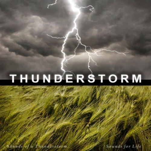 Thunder Sound - 6