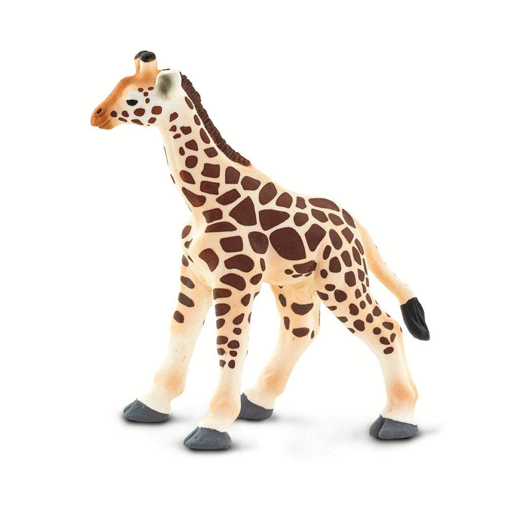 for Ages 3 and Up Giraffe Baby Quality Construction from Phthalate Wild Safari Wildlife Safari Ltd Lead and BPA Free Materials