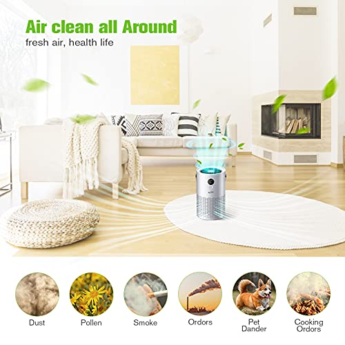 Housmile Air Purifier for Home,Air Cleaner with True HEPA Filter,3 Speeds Desktop Air Cleaner,Portable Purifiers for Dust, Smokers, Pollen, Pet Dander, Hay Fever, Cooking Smell(Gray)
