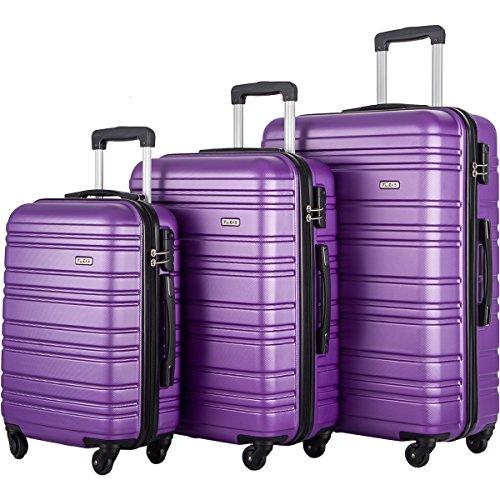 FLIEKS Luggages 3 Piece Luggage Set Spinner Suitcase (Purple) by Flieks