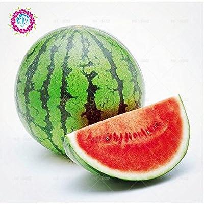 30 pcs Dwarf Watermelon seeds, Little Baby Flower, citrullus lanatus watermelon, Great in Pots!Fruit seeds for garden plants 1 : Garden & Outdoor