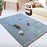 Rug WAN SAN QIAN- Economy Nordic Living Room Carpet Country Style Home Carpet Bedside Bedside Blanket Blended Stripe Carpet (Color : Blue, Size : 60x170cm)