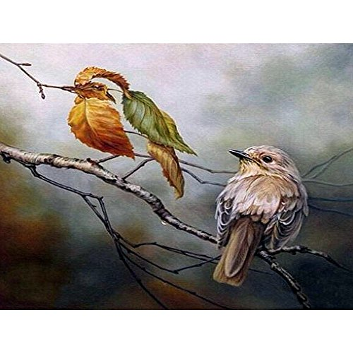 Diamond Painting by Number Kit, Full Drill Round Beads DIY 5D Embroidery Cross Stitch Supply Arts Craft Canvas Wall Decor (Canvas Size: 12'' x 18''/30cm x 40cm) (Birds of A Feather) by Ayeboovi