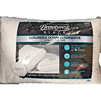 Amazon Com Lc Platinum Memory Fiber 2 Pack Jumbo Pillows