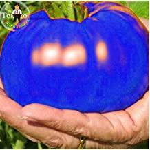 100pcs Heirloom Blue Tomato Seeds Delicious Giant Bonsai Vegetable Seeds Organic Potted Plants For DIY Home Garden