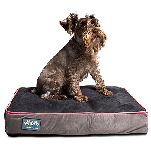 Better World Pets 5-Inch Thick Waterproof Orthopedic Memory Foam Dog Bed with 180 GSM Removable Washable Cover, Small (24