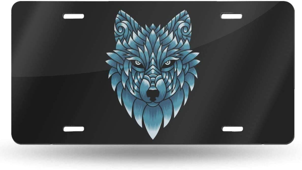 huizehonghong Personalized Auto Truck Car Front Tag Aluminum Metal License Plate Cover 12 x 6 Inch