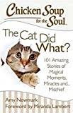 chicken soup for the soul for men - Chicken Soup for the Soul: The Cat Did What?: 101 Amazing Stories of Magical Moments, Miracles and. Mischief
