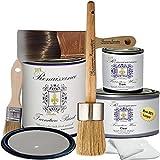 Renaissance Chalk Furniture Paint Deluxe Starter Kit - 32oz Paint/8oz Clear Wax/4oz Dark Wax/2'' Paint Brush/1.5'' Wax Brush/1'' Detail Wax Brush! - Dove Grey (DSK)
