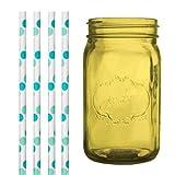 Dress My Cupcake DMC35225 Amber Yellow Vintage Jardin Mason Jar with Aqua and Green Polka Dot Straws, 32-Ounce