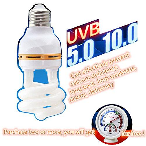 uv lamp for lizard - 7