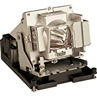 OPTOMA BL-FS300C / Replacement Lamp COMPATIBLE WITH TH1060P AND TX779P-3D