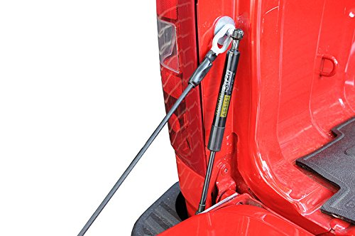Review Dee Zee DZ43301 Tailgate Assist Shock