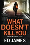 What Doesn't Kill You (A DI Fenchurch novel)