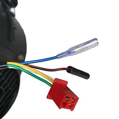 Amazon.com: X-PRO 50cc 4-stroke GY6 Scooter Motor Auto w/CVT ...