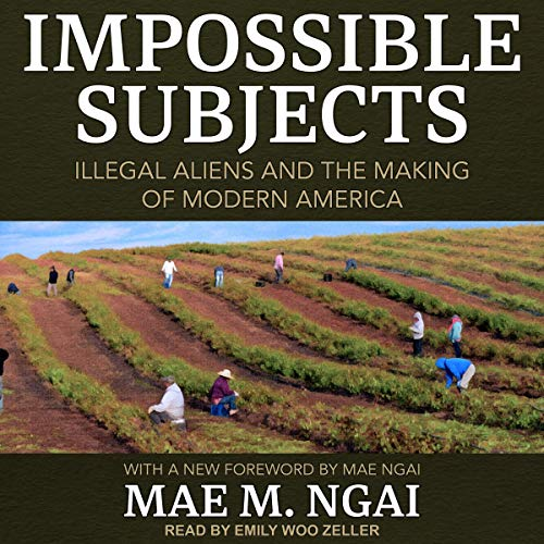 Pdf Social Sciences Impossible Subjects: Illegal Aliens and the Making of Modern America