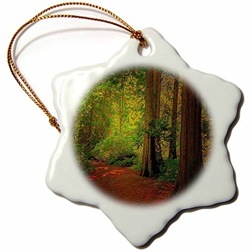 DYLAN SEIBOLD - PHOTOGRAPHY - CEDAR ALLEY TRAIL - 3 inch Snowflake Porcelain Ornament (245745_1) -