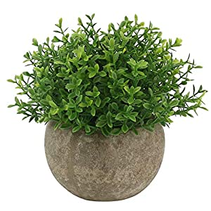 Ogrmar Mini Plastic Artificial Plants Grass in Pot/Small Artificial Faux Greenery/Mini Plants Topiary Shrubs Fake Plants for Bathroom, House Decorations (Green Leaf) 1