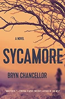 Download for free Sycamore