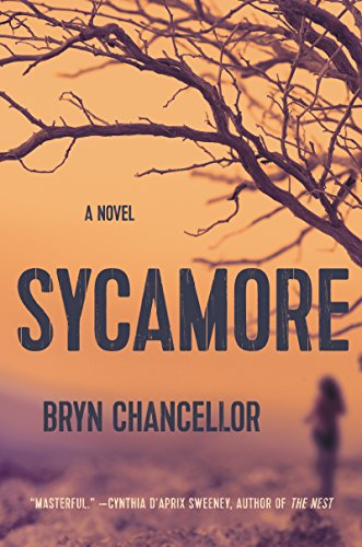 Sycamore cover