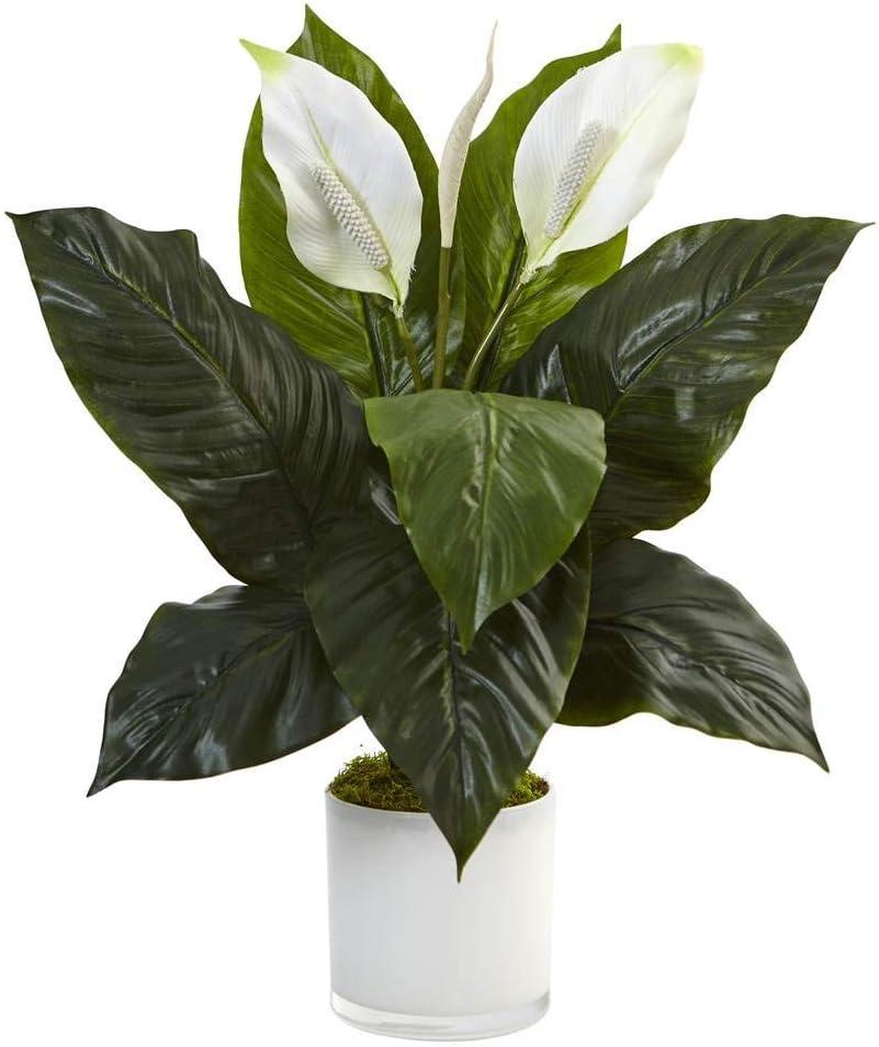 Artificial Spathiphyllum plant