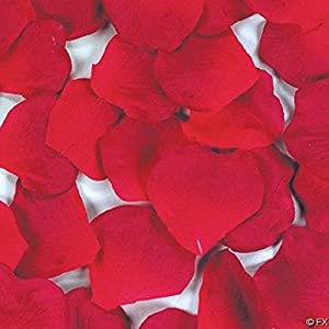 1Pack(100Pcs) Red Rose Petals Artificial Multi--functional Flowers Decorations, Wedding Party/Vase/Home Decor/Bridal Rose Flower Petals Favors Decoration 19