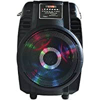 MAX POWER MPD65L Karaoke DJ speaker system