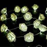 KINGSO 20 LED Battery Operated Rose Flower String Lights Wedding Garden Christmas Decor (White)