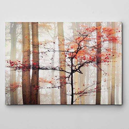 WEXFORD HOME Orange Awakening Gallery Wrapped Canvas Wall Art, 24x36,