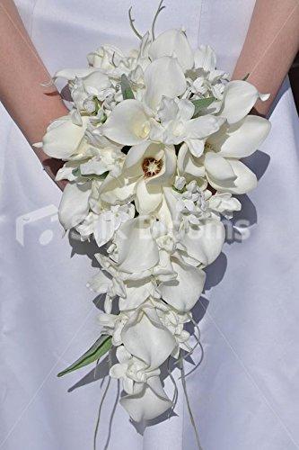 Amazon brilliant white calla lily magnolia cascade bridal brilliant white calla lily magnolia cascade bridal wedding bouquet junglespirit Images