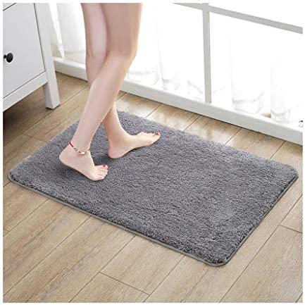 Yxx max -Carpet Floor Mats Home Mats,Non-Slip Water Absorption Bathroom Mat Carpet,Indoor Door Mat Dustproof Living Room Rug (Color : C Size : 4060cm)