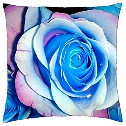 Amazon.com  RENJUNDUN Blue roses - Throw Pillow Cover Case  Home ... 393babc2275