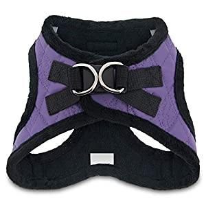 Voyager Step-in Plush Dog Harness – Soft Plush, Step in Vest Harness for Small and Medium Dogs by Best Pet Supplies