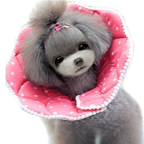 Bolbove Pink Dots Pet Soft & Stylish Cone Recovery E-Collar for Dogs & Cats (5#) by Bolbove