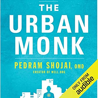 The Urban Monk: Eastern Wisdom and Modern Hacks to Stop Time and