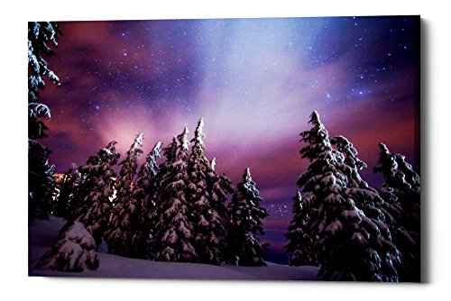 Epic Graffiti Winter Nights by Darren White Giclee Canvas Wall Art, 26'' x 40'' by Epic Graffiti