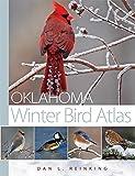 Oklahoma Winter