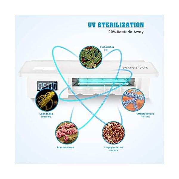 MECO ELEVERDE Portacepillos de Dientes Soporte de Dientes de UV Esterilizador con 5 Ports de Dientes Soporte de Pared… 10