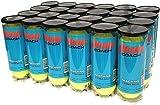 Penn Coach Practice Tennis Balls, Case of 72 Balls, 24 cans, 3 Balls per Can (Blue Cans)
