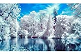 Vansiho DIY 5D Diamond Painting by Number Kit for Adult Art Home Decorations,Snow Scene(12X18inch/30X45CM)
