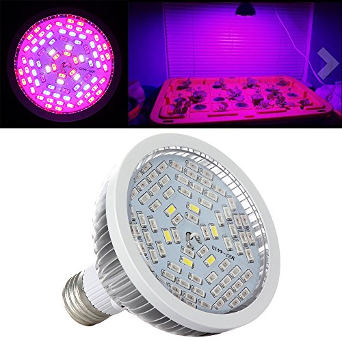 Newest Led Grow Lights - 2