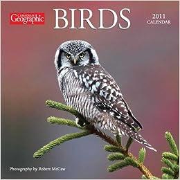 2011 Birds - Mini Calendar
